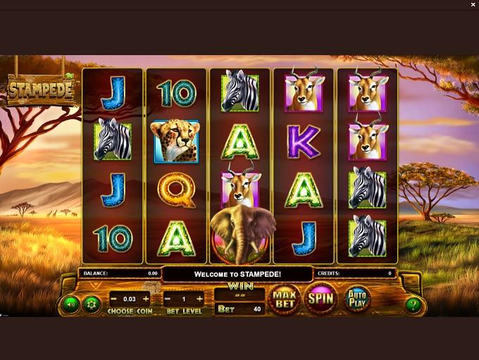 WizBet Casino new Game 2