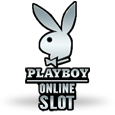 Playboy icon