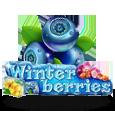 Winter Berries icon