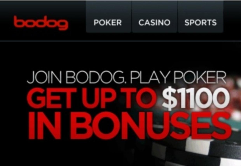 Gambling911 bodog betting i0c crypto currency charts