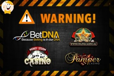 Pamper Casino Download
