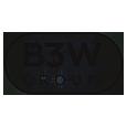 B3W Group logo